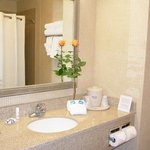 Foto de Holiday Inn Express Hotel & Suites Lafayette