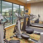 Pool & Fitness facilities at Holiday Inn Bolingbrook, Illinois