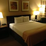Foto Holiday Inn Hotel and Conference Center Detroit - Livonia