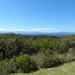 Foto de Fynbos Ridge Country House & Cottages