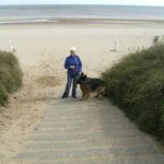 dog friendly beach walk