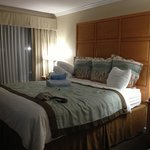 Foto de BEST WESTERN PLUS Silicon Valley Inn