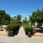 Hotel Gardens and outdoor dining area (76665625)