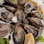 Beautiful fresh oysters