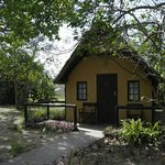 Фотография Wildebees Ecolodge