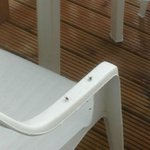 Flies on decking area(van 144)