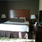 BEST WESTERN PLUS Tupelo Inn & Suites resmi
