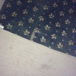 Upper Reaches - room 31 carpet