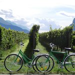 Bike ride through Arco, Dro to vineyards in Sarche