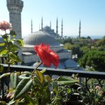 Terrace view - Blue mosque