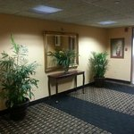 Holiday Inn Express Miami-Hialeah (Miami Lakes) Foto