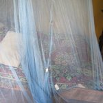 Unacceptable mosquito netting I had to duct-tape