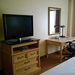 Foto Hilton Garden Inn Orlando at SeaWorld