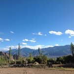view from our room at Ladakh Serai