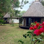 Foto Speke Bay Lodge