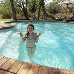 Enjoying the pool, just before an elephant came for a drink