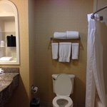 Φωτογραφία: Holiday Inn Express Cathedral City (Palm Springs)