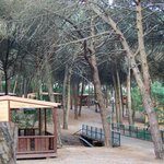 Photo of Lisboa Camping & Bungalows