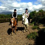 Bilde fra Eclipse Ireland Holiday Homes, Equestrian & Activity Centre