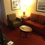 Φωτογραφία: Hilton Garden Inn Milwaukee Airport