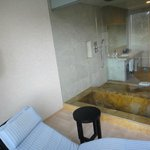Glass enclosed bath