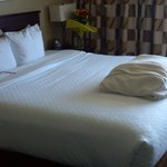 Φωτογραφία: Embassy Suites Hotel Columbus