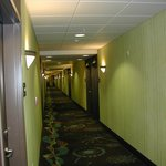 Photo de Hampton Inn Suites Wheeling - The Highlands