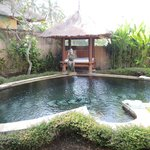 Фотография Furama Villas & Spa Ubud