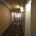 Photo de Hampton Inn Ithaca