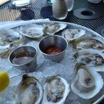 Maine oysters (5 types)