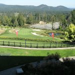 Bilde fra Westin Bear Mountain Victoria Golf Resort & Spa