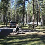 Foto Whistlers Campground