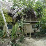 View of a rustic cabana