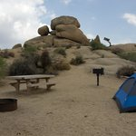 Jumbo Rocks Campground Foto