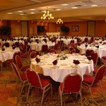 Holiday Inn Hotel & Suites Bolingbrook wedding receptions