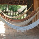 hammocks outside room