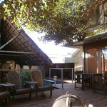 Fig Tree Guesthouse의 사진