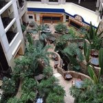 hotel atrium view from the 6th floor