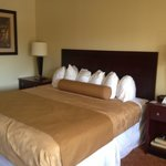 Foto de BEST WESTERN Oak Manor