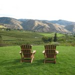 Relax in an Adirondack chair.