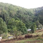 Foto van Mt Warning Forest Hideaway