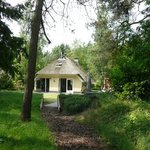 Photo of National Park Drents-Friese Wold