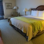 The Comfort Inn & Suites Anaheim, Disneyland Resort resmi