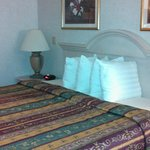 BEST WESTERN PLUS Des Moines West Inn & Suites Foto