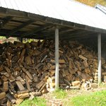 Fruitlands heat and hot water come from our own sustainable logging.