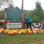 Cobb Creek Cabins의 사진