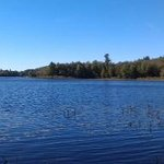 Williams Pond Lodge의 사진