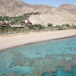 Foto di The Orchid Hotel and Resort Eilat