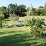 Photo of B&B Villa Giulia