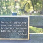 loved the plaques on the park benches